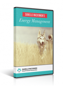 EnergyManagement3D