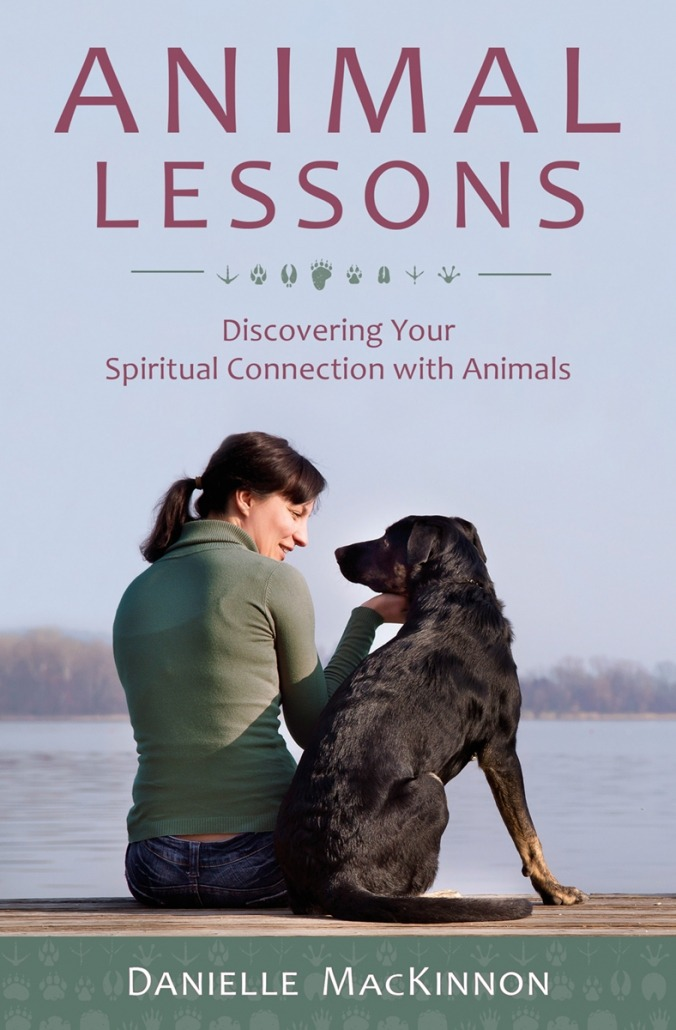 Animal Lessons book