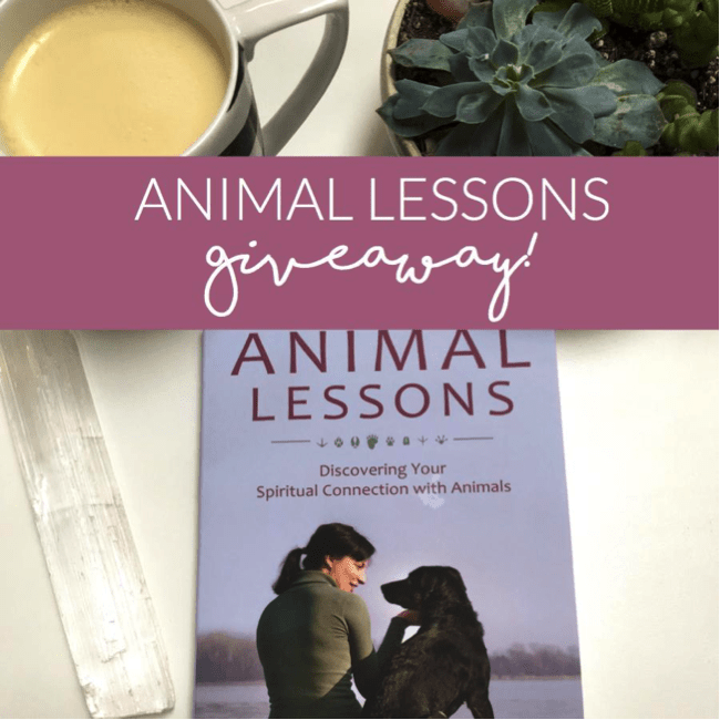 Animal Lessons Instagram Contest