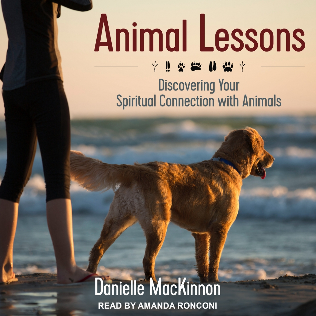 Animal Lessons Audiobook