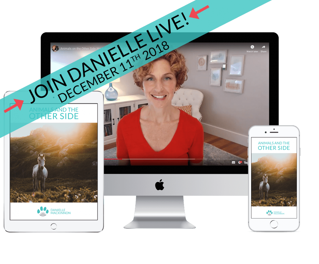 join danielle live and accessible on mobile devices