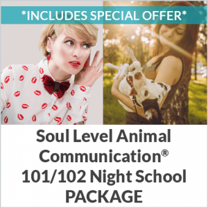 Beginning Animal Communication Course offer