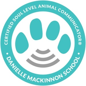 Soul Level Certification, directory of animal communicators, seal