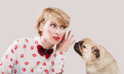 pet psychic course, learn to communicate with animals, beginning animal communication