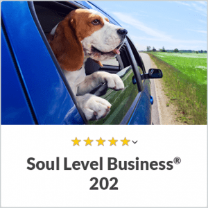 Soul Level Intuitive Business